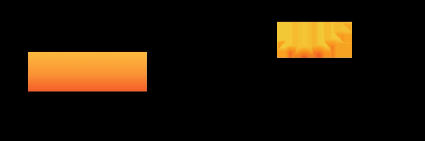 The AYN Webinar Series